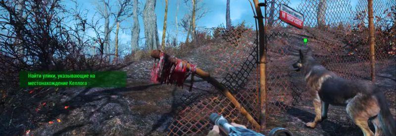 Окровавленные повязки на заборе - новая улика