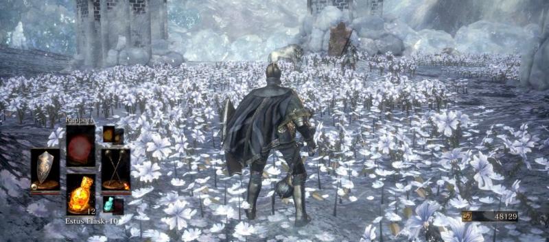 Хранитель могилы чемпиона