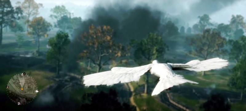 Полет голубя