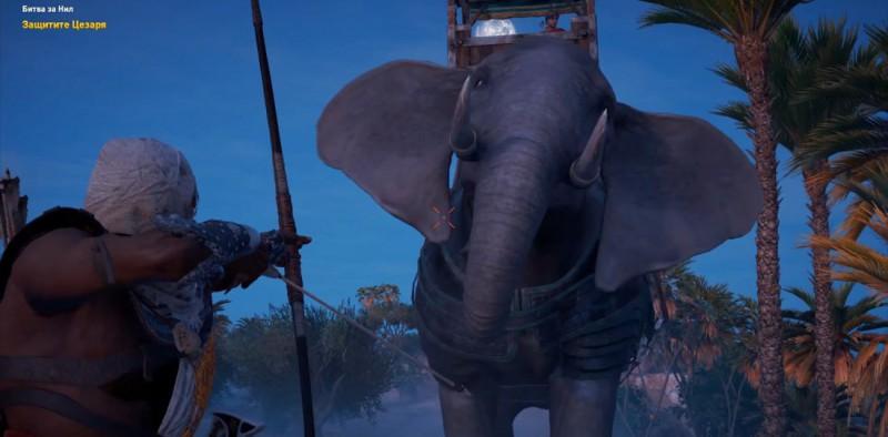 Слоняра атакует