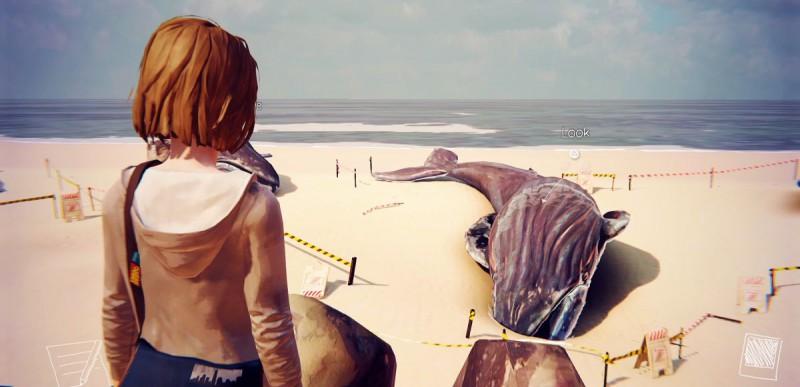 Экспонаты китов на пляже