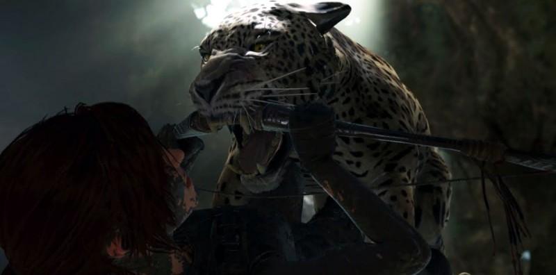 Бой с ягуаром