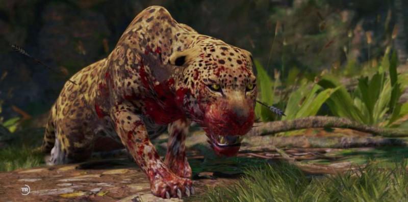 Бьем гепарда