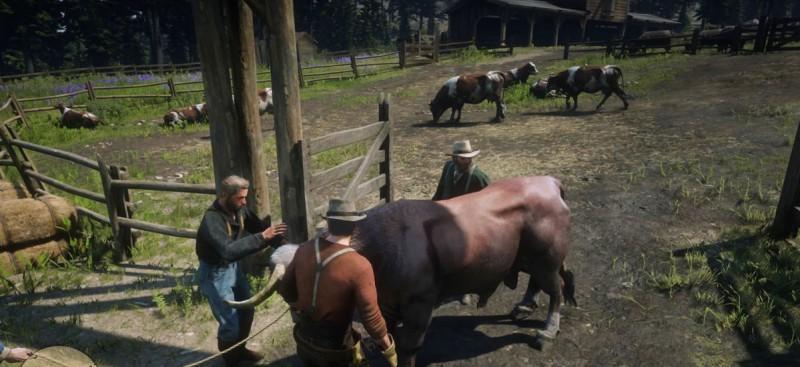 Обуздать быка