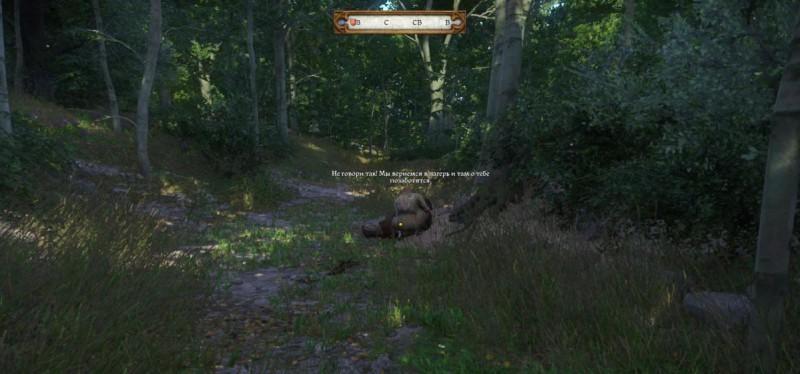 Разбойники найдены на поляне
